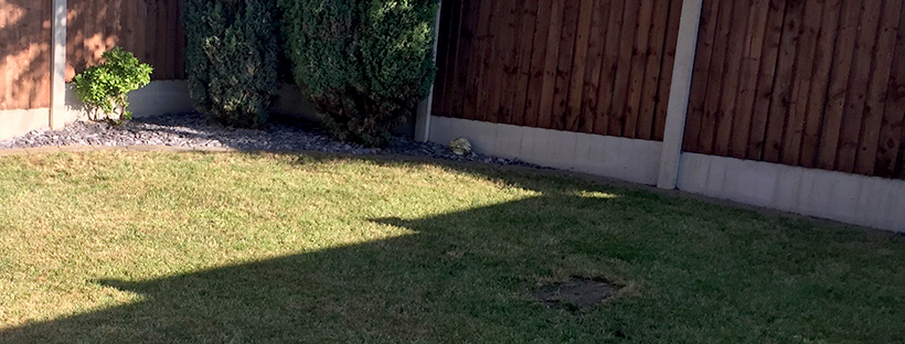 Dominate the neighbours – Lawn edging