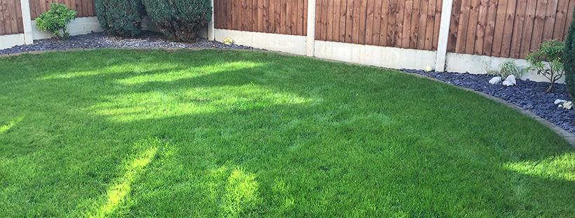 Dominate the neighbours – The last fertiliser application